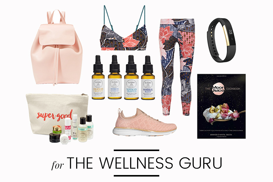Holiday Gift Ideas 2016 – Wellness Guru